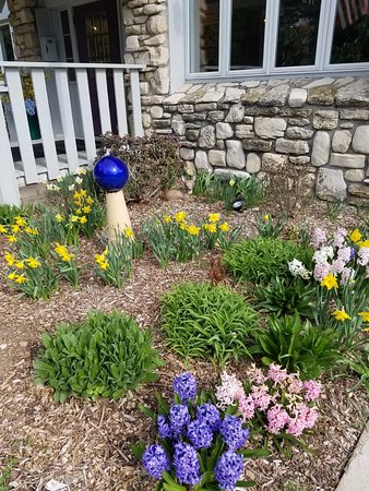 Country House Resort : Spring flowers at the front door.