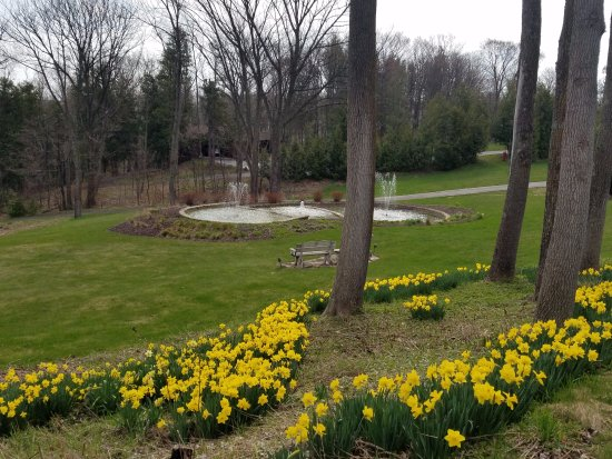 Country House Resort : Fountain and gardens in early spring