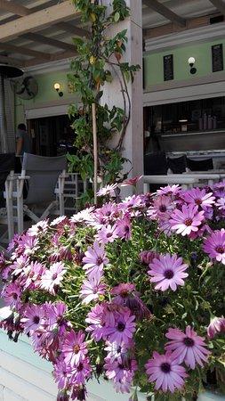 Sivota, Greece: IMG_20170503_140036_large.jpg