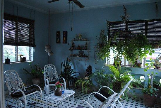 Casa de Cuevas: terraza cerrada con plantas ornamentales donde se recibe la brisa directa del mar a solo 100 met