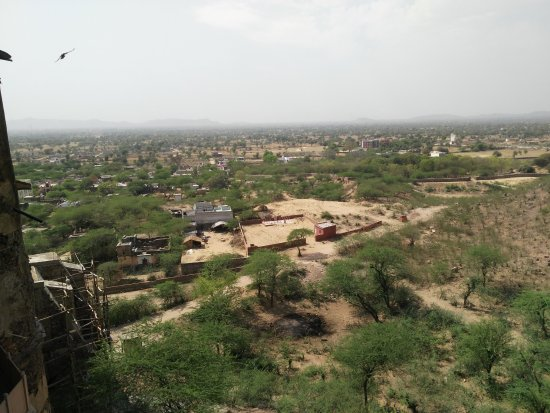 Flying Fox Neemrana: another view