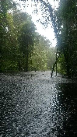 Tapiche Reserve: beautiful rain