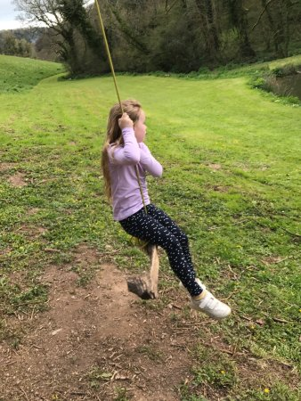 East Allington, UK: Fun times at flear Farm