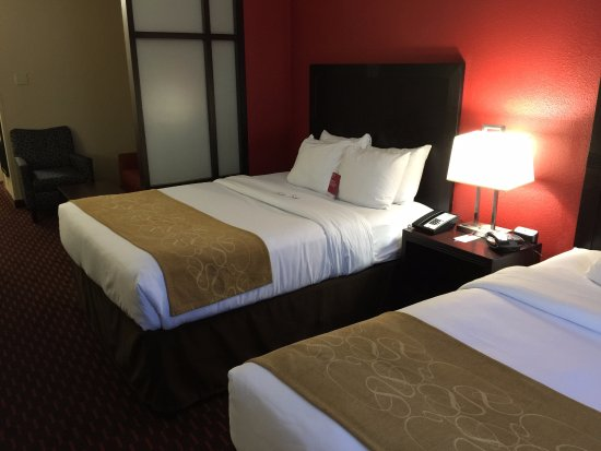Comfort Suites Florence: another view