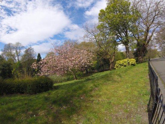 Kelvingrove Park: photo3.jpg