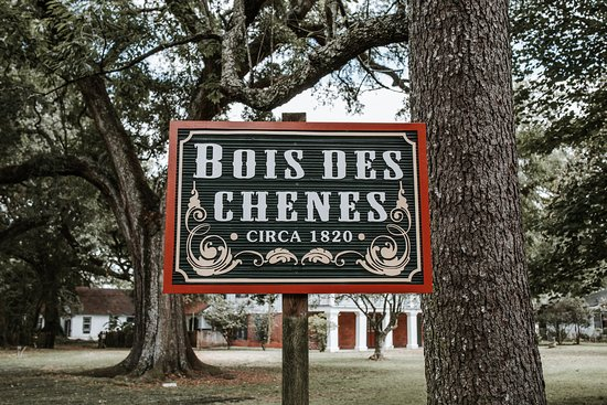 Bois Des Chenes Bed and Breakfast