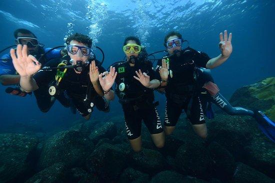 Atlantis Divers: Alguns dos sinais que nos ensinaram.
