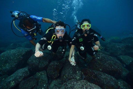 Atlantis Divers: Mergulho