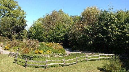 Imagen del jard n bot nico de gij n picture of jardin for Jardin del atlantico reviews