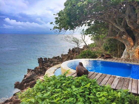 Quilalea, Mozambique: photo0.jpg