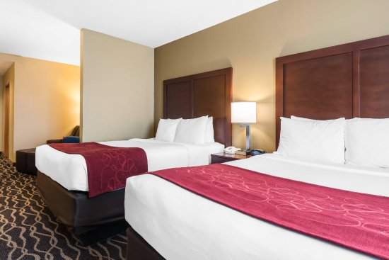 Comfort Suites Tampa Airport North Foto