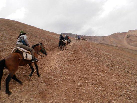 Trekking Travel Expediciones - Day Tours: Gracias Amador, caballo fiel y compañero de expedicion