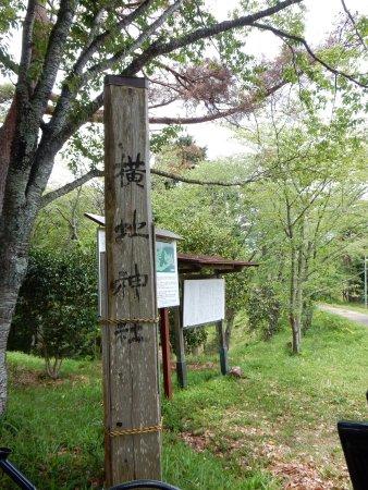 Yokoji Castle Ruins: photo2.jpg