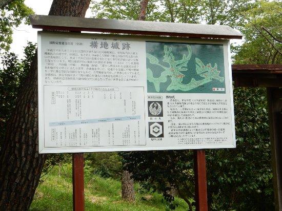Yokoji Castle Ruins: photo3.jpg