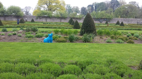 County Meath, Irlanda: Garden
