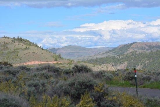 Curecanti Creek : Looking back towards Blue Mesa