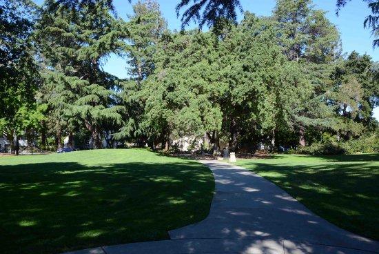 Pioneer Memorial Park: lawns and walkways