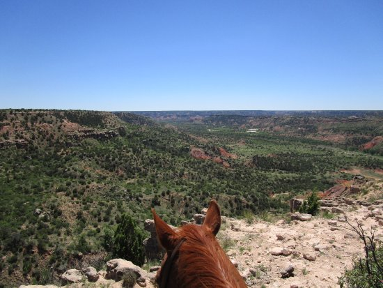 Cowgirls and Cowboys in the West: Views are always better over a horses ears