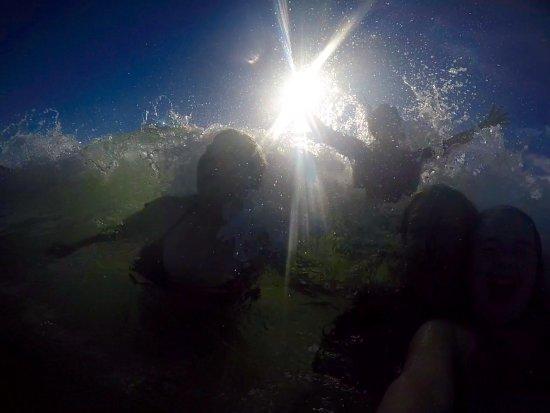 Ticket to Ride Surf School : photo0.jpg