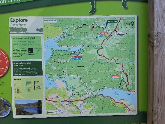 Map of Three Lochs Area - Picture of Three Lochs Forest