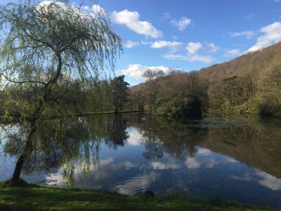 Llangammarch Wells, UK: Lake view