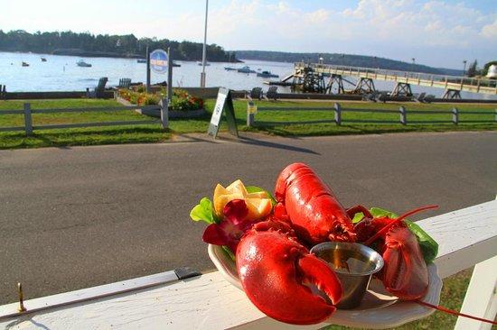 East Boothbay, ME: Lobster fresh form the Atlantic Ocean!