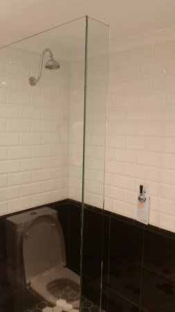 Brisbane Riverview Hotel: Toilet is not in the shower. It's a reflection. Sorry