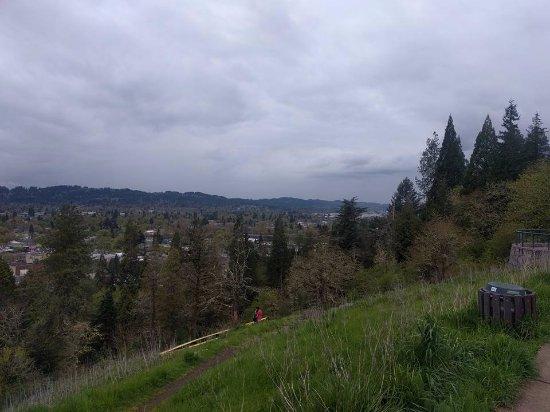 Skinner Butte Park : Vista desde el mirador