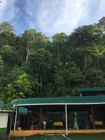 La Leona Eco Lodge: photo2.jpg