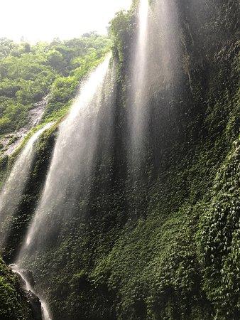 Madakaripura Waterfall : photo2.jpg