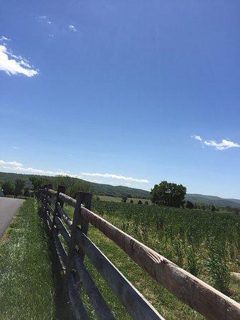 Antietam National Battlefield : photo2.jpg