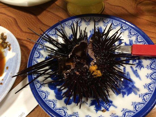 Minshuku Iruka Kan: トゲが動いている紫ウニ