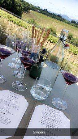 Wine Cube Tours: photo1.jpg