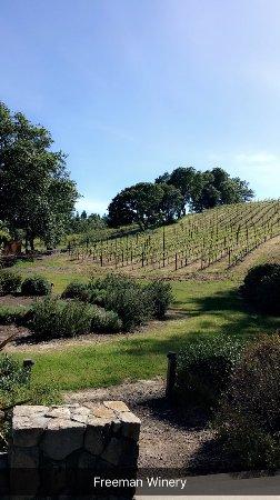 Wine Cube Tours: photo2.jpg