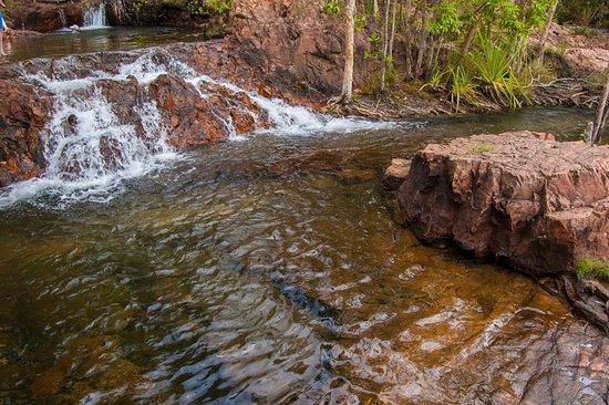 Litchfield National Park, Australia: Great swimming spots