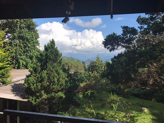 J Residence: View from Veranda