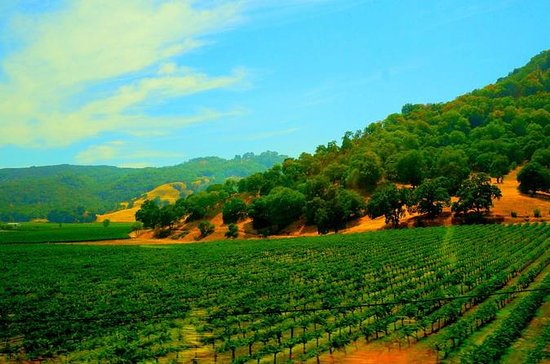 Napa Valley Wine Country Tour fra San...