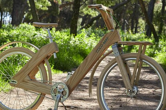 The Wooden Bicycle Tour in Stockholm