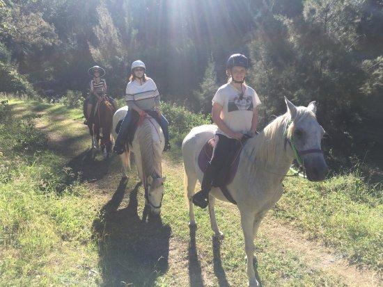 Gatton, Australia: Beautiful scenic trail ride