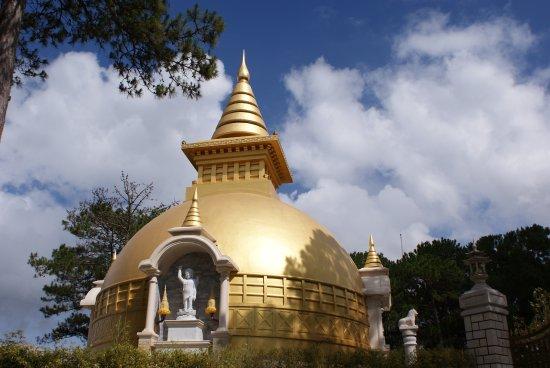 Thien Vuong Co Sat Pagoda : 寺の奥にあります