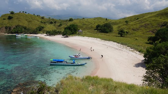 Komodo Wonderfull Tour: Pink beach