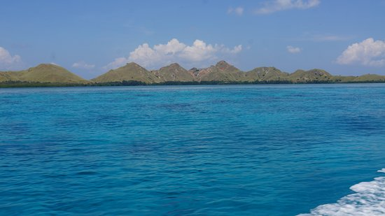 Komodo Wonderfull Tour: On the way back
