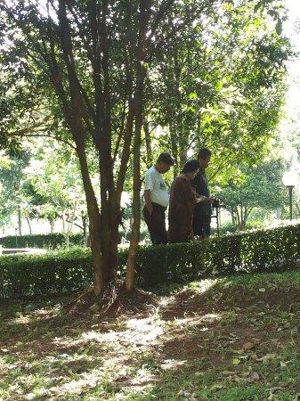 taman bagus untuk jalan jalan picture of braja mustika