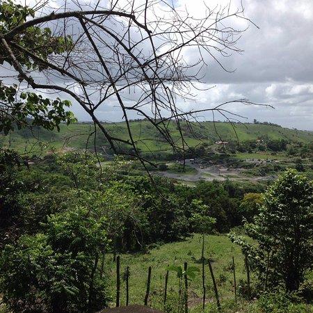 Uma vista do parque.