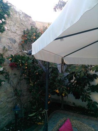 Foto de Domus Olbia Inn