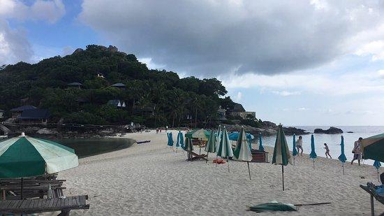 Taatoh Resort & Freedom Beach Resort: ตาโต๊ะรีสอร์ท แอนด์ ฟรีดอมบีชรีสอร์ท