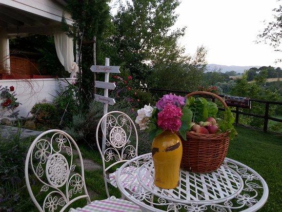 B&B Il Fienile di Scarperia: The garden