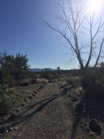 Elephant Butte, Nuevo Mexico: photo7.jpg
