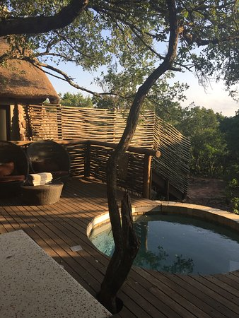 Phinda Private Game Reserve Picture