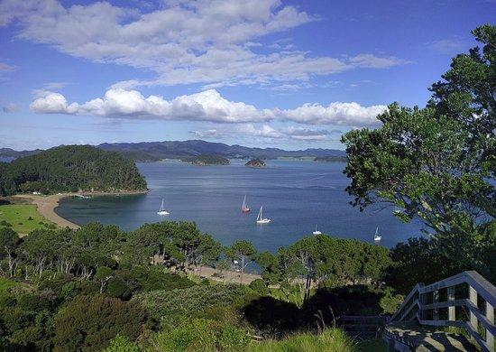 Opua, Selandia Baru: Roberton Island